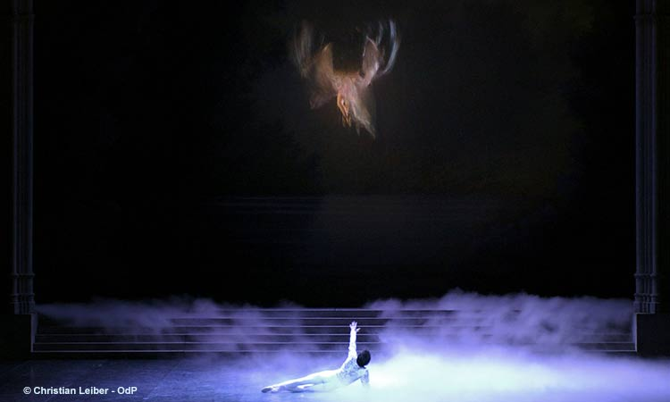 lac des cygnes rudolf noureev 2015
